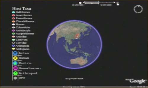 (Los científicos han usado el programa Google Earth para representar las mutaciones del virus de la gripe aviar.) (Foto: Ohio State University)
