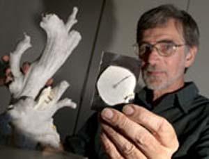 (Ron Thresher muestra fragmentos de coral usados en el estudio.) (Foto: CSIRO)