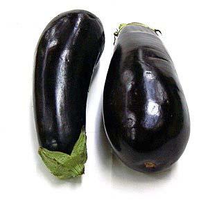 (Las plantas de otros planetas podrían ser negras.) (Foto: WUSTL)